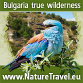 Nature Travel Bulgaria - birdwatching and wildlife photography in Bulgaria NatureTravel.eu offers birdwatching and wildlife photography hides in North East Bulgaria. Guests can rent a self-catering cozy cottage in a traditional style situated in a quiet small village. Photographers can benefit from four photography hides for Golden Oriole, Hawfinch, Hoopoe, Rollers, Bee-eaters, Golden Jackal, and at least 10 more local specialities.